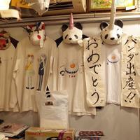 谷中ジンジャーの写真・動画_image_148768