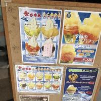 芳川屋の写真・動画_image_150142