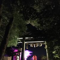 武雄神社(武雄五社大明神)の写真・動画_image_150645