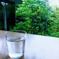 根津美術館の写真・動画_image_150677
