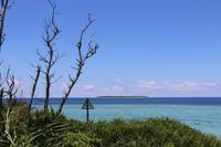瀬底ビーチの写真・動画_image_151328