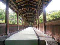 龍安寺の写真・動画_image_152566