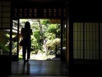 旧今井家住宅・美濃史料館の写真・動画_image_153806