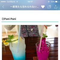 Pani Paniの写真・動画_image_154395