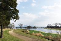 江津湖の写真・動画_image_157416