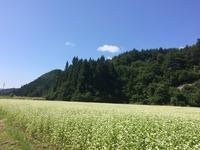 日中温泉の写真・動画_image_157819