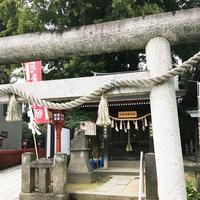 川越八幡宮の写真・動画_image_160391