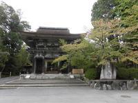 園城寺の写真・動画_image_161856