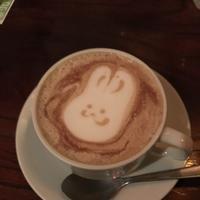 cafe&lounge ANALOG SHINJUKUの写真・動画_image_166409