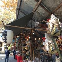 須賀神社の写真・動画_image_166864