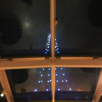 Terrace Dining TANGOの写真・動画_image_167216
