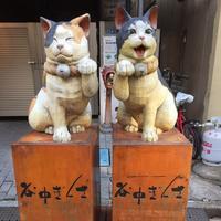 谷中銀座商店街 の写真・動画_image_168749