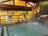 秩父温泉・満願の湯の写真・動画_image_168991