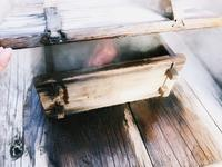 杖立温泉の写真・動画_image_170034