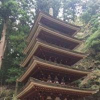 室生寺の写真・動画_image_170234