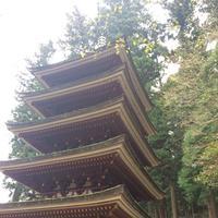 室生寺の写真・動画_image_170235