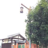 中谷堂 三条もちいどの店の写真・動画_image_170354