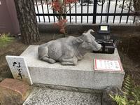 六波羅蜜寺の写真・動画_image_170825