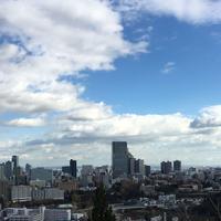 仙台城跡の写真・動画_image_171157