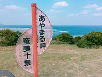 あやまる岬観光公園の写真・動画_image_171877