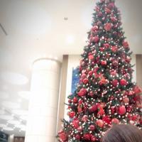 東京ドームホテルの写真・動画_image_172744