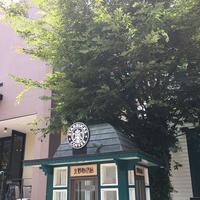 スターバックスコーヒー 神戸北野異人館店(STARBUCKS COFFEE)の写真・動画_image_174193