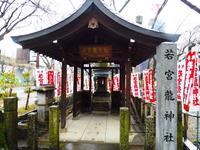 若宮八幡社の写真・動画_image_175224