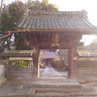 清林寺の写真・動画_image_176228