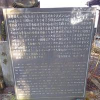 清林寺の写真・動画_image_176230