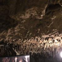 玉泉洞の写真・動画_image_176801
