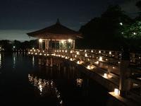 奈良公園 浮見堂の写真・動画_image_177078