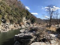 長瀞岩畳の写真・動画_image_178972