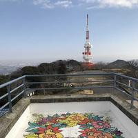 湘南平(高麗山公園)の写真・動画_image_179799
