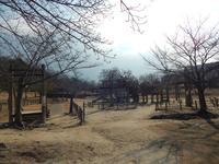 けいはんな記念公園の写真・動画_image_179949