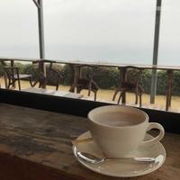 カフェくるくまの写真・動画_image_183802