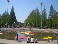 花博記念公園鶴見緑地の写真・動画_image_185164