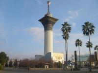 花博記念公園鶴見緑地の写真・動画_image_185165