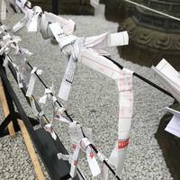 上野東照宮の写真・動画_image_185968
