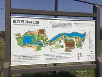 石神井公園の写真・動画_image_187443