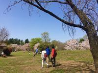 石神井公園の写真・動画_image_187446