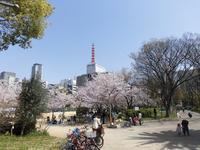 靱公園の写真・動画_image_187557