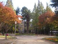 靱公園の写真・動画_image_187558