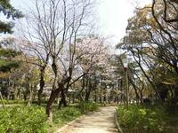 靱公園の写真・動画_image_187560