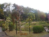 城北公園の写真・動画_image_187739