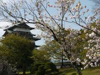 高島城の写真・動画_image_188508