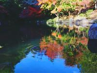 成田山公園の写真・動画_image_188705