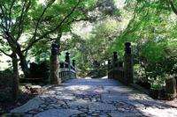 成田山公園の写真・動画_image_188722