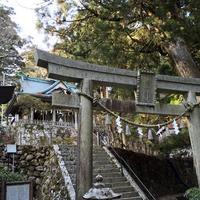 玉置神社の写真・動画_image_189239