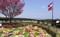港の見える丘公園の写真・動画_image_189355