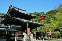 今熊野観音寺の写真・動画_image_189992